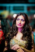 at Micromax SIIMA 2014 on 12th Sept 2014 (90)_54168ba2d2b9d.jpg