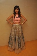 Neeti Mohan at the Audio release of Happy New Year on 15th Sept 2014 (16)_541850a805cf3.JPG
