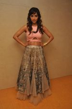 Neeti Mohan at the Audio release of Happy New Year on 15th Sept 2014 (17)_541850a95d9cc.JPG