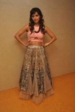 Neeti Mohan at the Audio release of Happy New Year on 15th Sept 2014 (18)_541850aaa5c8a.JPG