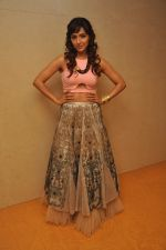 Neeti Mohan at the Audio release of Happy New Year on 15th Sept 2014 (20)_541850ac0d23b.JPG