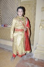 Faisal Khan at Maharana Pratap Singh wedding scene on location in Filmcity on 17th Sept 2014  (33)_541ab81a58806.JPG