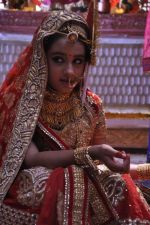 Roshni Walia at Maharana Pratap Singh wedding scene on location in Filmcity on 17th Sept 2014  (11)_541ab860001e6.JPG