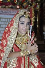 Roshni Walia at Maharana Pratap Singh wedding scene on location in Filmcity on 17th Sept 2014  (9)_541ab85d93967.JPG