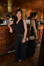 Drashti Dhami at Munisha Khatwani_s bday bash in Esco Bar on 24th Sept 2014 (142)_542405d59dc7d.JPG