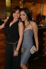 Drashti Dhami, Shilpa Anand at Munisha Khatwani_s bday bash in Esco Bar on 24th Sept 2014 (72)_542405d7ec3cb.JPG