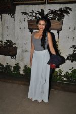 Mrinalini Sharma at 3AM premiere in Sunny Super Sound on 25th Sept 2014 (78)_5425976f07f07.JPG