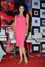 Tripta Parashar at Rang Rasiya music launch in Deepak Cinema on 25th Sept 2014 (284)_54259c041d555.JPG