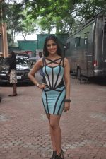 Aarti Chhabria at country club_s new year bash in Mumbai on 26th Sept 2014 (4)_54269f1374c5e.JPG