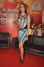 Aarti Chhabria at country club_s new year bash in Mumbai on 26th Sept 2014 (99)_54269f2371f73.JPG