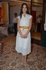 Kim Sharma at Helping Hands exhibition in Palladium on 29th Sept 2014 (18)_542a8c4c4b124.JPG
