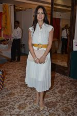 Kim Sharma at Helping Hands exhibition in Palladium on 29th Sept 2014 (19)_542a8c4ce7615.JPG
