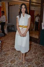 Kim Sharma at Helping Hands exhibition in Palladium on 29th Sept 2014 (21)_542a8c4e1d0ae.JPG