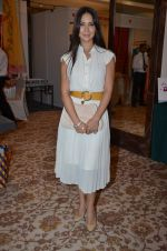 Kim Sharma at Helping Hands exhibition in Palladium on 29th Sept 2014 (22)_542a8c4eb5f40.JPG