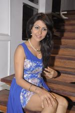 Bhoomi Shree in saree at Blackmail film on the sets in Future Studio on 30th Sept 2014 (43)_542bdfbd14c91.JPG