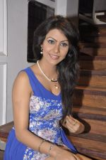 Bhoomi Shree in saree at Blackmail film on the sets in Future Studio on 30th Sept 2014 (45)_542bdfbee8450.JPG