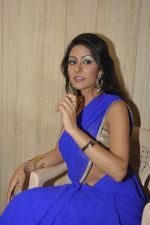 Bhoomi Shree in saree at Blackmail film on the sets in Future Studio on 30th Sept 2014 (69)_542bdfd66e474.JPG