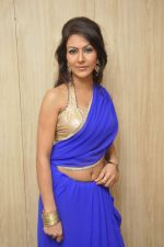 Bhoomi Shree in saree at Blackmail film on the sets in Future Studio on 30th Sept 2014 (93)_542bdfed6de3a.JPG