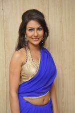 Bhoomi Shree in saree at Blackmail film on the sets in Future Studio on 30th Sept 2014 (96)_542bdfef904a9.JPG