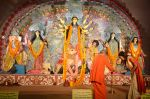 Sushmita Sen at Durga Pooja on 30th Sept 2014 (129)_542be0527bad3.JPG