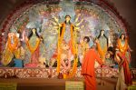 Sushmita Sen at Durga Pooja on 30th Sept 2014 (130)_542be0537765f.JPG