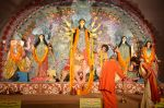 Sushmita Sen at Durga Pooja on 30th Sept 2014 (132)_542be055617fc.JPG