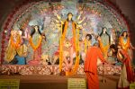 Sushmita Sen at Durga Pooja on 30th Sept 2014 (136)_542be05951b5a.JPG