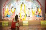 Sushmita Sen at Durga Pooja on 30th Sept 2014 (7)_542bdfdc4b837.JPG