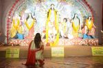 Sushmita Sen at Durga Pooja on 30th Sept 2014 (8)_542bdfdd37153.JPG