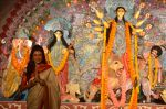 Sushmita Sen at Durga Pooja on 30th Sept 2014 (93)_542be02edb419.JPG