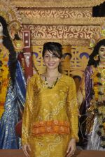 Tanisha Mukherjee at Durga Pooja on 4th Oct 2014 (7)_5430bc5fc777b.JPG