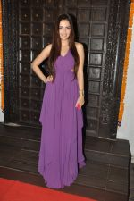Shazahn Padamsee at Soniya VEMB preview in Dvar, Mumbai on 9th Oct 2014 (11)_5437789cc1a82.JPG