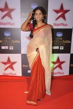 Usha Jadhav at Star Plus box Office Awards in Mumbai on 9th Oct 2014 (10)_543788ba73a20.JPG