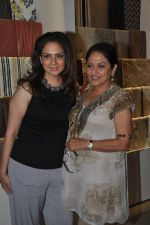 Anju Mahendroo at the Launch of D_Decor Store in Bandra on 10th Oct 2014 (21)_54391f7a9b848.JPG