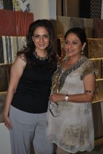 Anju Mahendroo at the Launch of D_Decor Store in Bandra on 10th Oct 2014 (22)_54391f7ba5e33.JPG