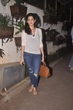 at Special screening of Sonali Cable at Sunny Super Sound on 11th Oct 2014 (29)_543a83ed5d71f.JPG