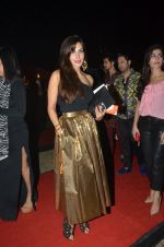 on day 5 of wills Fashion Week for rohit bal show on 12th Oct 2014 (202)_543b753f62b76.JPG