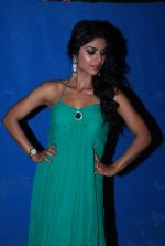 Sayantani Ghosh at TV shoot for new season of Cricket league in Mumbai on 13th Oct 2014 (61)_543cd5628efaa.JPG