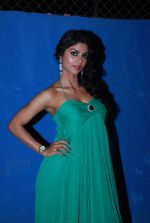 Sayantani Ghosh at TV shoot for new season of Cricket league in Mumbai on 13th Oct 2014 (64)_543cd564e293a.JPG