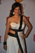 Tanisha Singh at Bright party in Powai on 16th Oct 2014 (96)_5441255fe4538.JPG