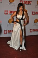 Tanisha Singh at Bright party in Powai on 16th Oct 2014 (99)_5441254e78fbf.JPG