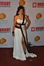 Tanisha Singh at Bright party in Powai on 16th Oct 2014 (105)_54412551950bc.JPG