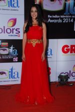 Deepika Samson at ITA Awards red carpet in Mumbai on 1st Nov 2014 (168)_5456354595196.JPG