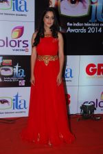 Deepika Samson at ITA Awards red carpet in Mumbai on 1st Nov 2014 (169)_54563547a6f5b.JPG