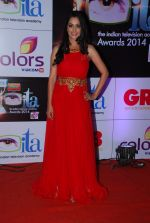 Deepika Samson at ITA Awards red carpet in Mumbai on 1st Nov 2014 (175)_5456354f296a0.JPG