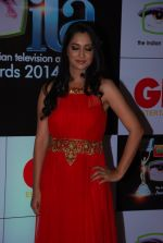 Deepika Samson at ITA Awards red carpet in Mumbai on 1st Nov 2014 (176)_5456355037878.JPG