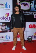 Jay Soni at ITA Awards red carpet in Mumbai on 1st Nov 2014 (379)_5456362677235.JPG