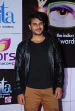 Jay Soni at ITA Awards red carpet in Mumbai on 1st Nov 2014 (381)_545636286dbcb.JPG
