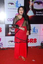 Jayati Bhatia at ITA Awards red carpet in Mumbai on 1st Nov 2014 (461)_545635e6af1a2.JPG
