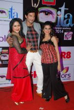 Manish Raisinghani, Jayati Bhatia at ITA Awards red carpet in Mumbai on 1st Nov 2014 (500)_545635e98c8b0.JPG